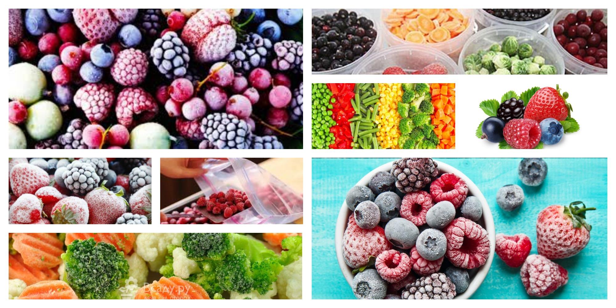 MyCollages_zamorozk Правильная заморозка фруктов, ягод, овощей