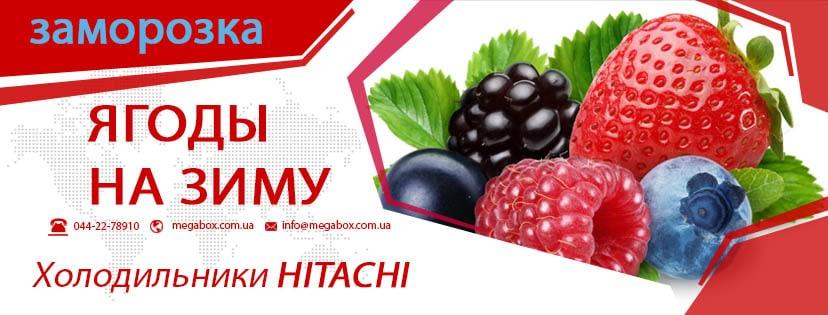 Правильная заморозка фруктов, ягод, овощей